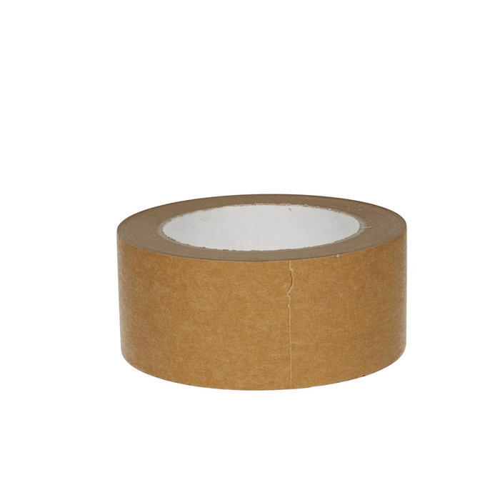<h4>Bloemisterij Tape 48mm 50m Eco papier</h4>