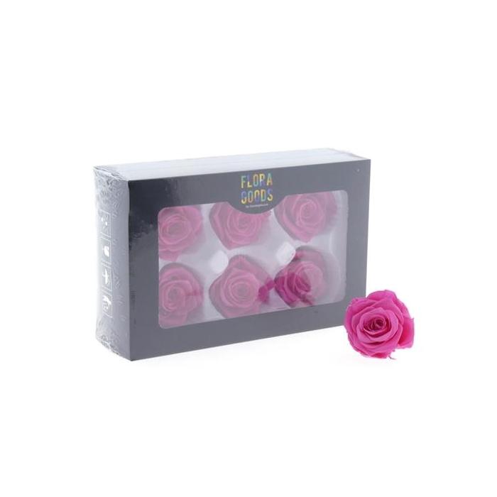 <h4>Pf Rose 6cm Sweet Pink</h4>