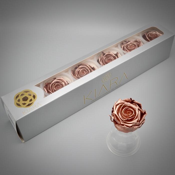 <h4>R PR Splendid Rosé Gold</h4>