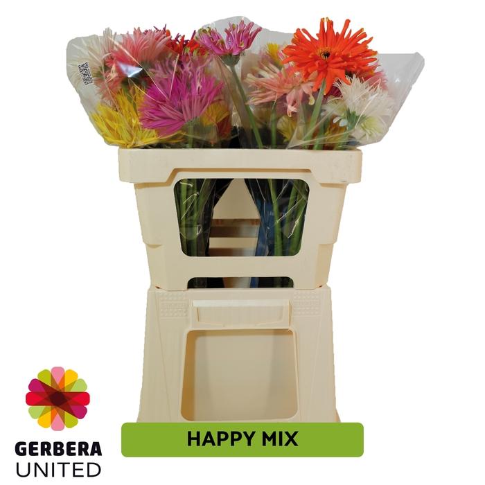 <h4>GE GR United Happy mix</h4>