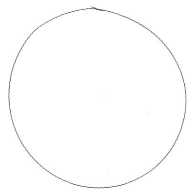 <h4>Bloemisterij Ring metaal d40cm x50</h4>