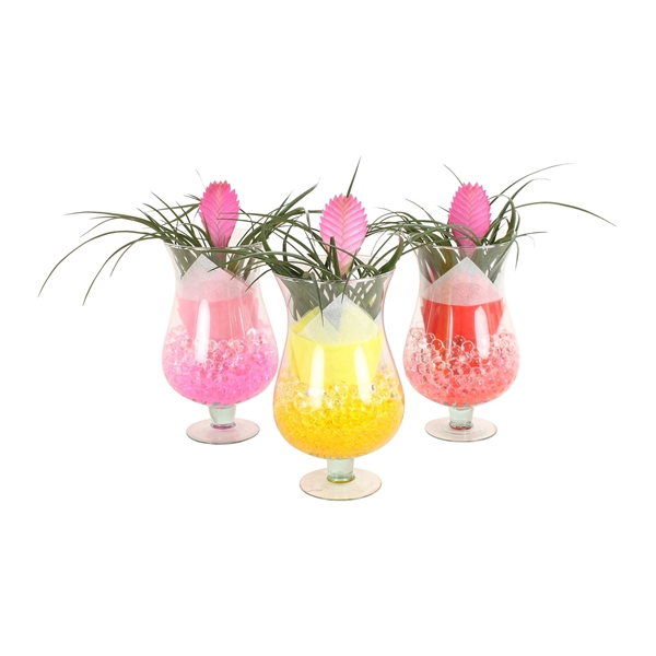 <h4>Cognac glass Large 17cm with arr Tillandsia and gelpearls</h4>