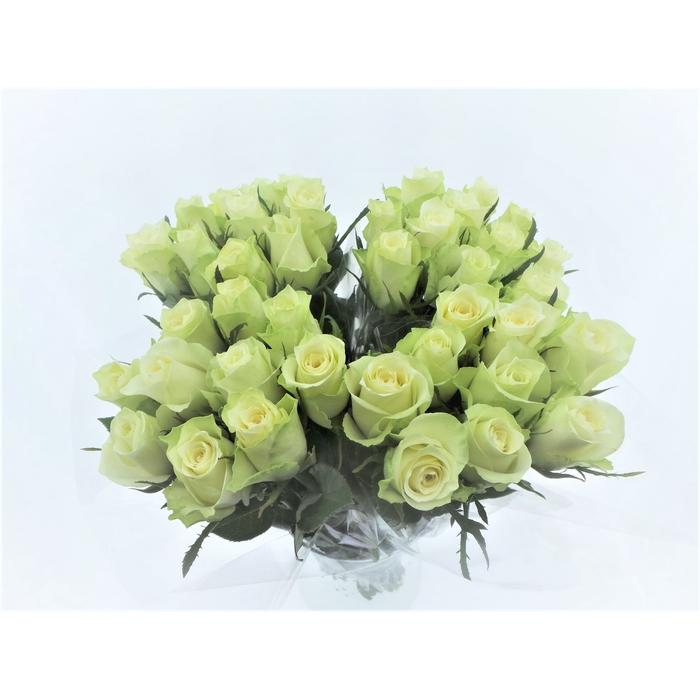 <h4>Bouquet Mono Rozen Wit x10 50cm</h4>