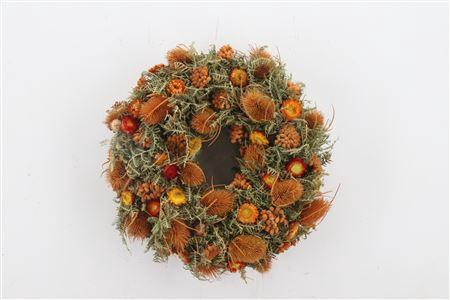 <h4>Wr Sensation Deluxe Orange Natural 40cm</h4>