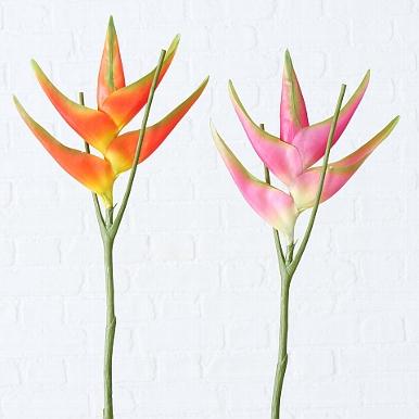 <h4>Zijde, Heliconia, H 82 cm, 2 ass, Fuchsia, Orange</h4>