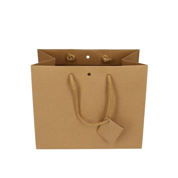<h4>Tassen Gift bag d24/14*19.5cm</h4>