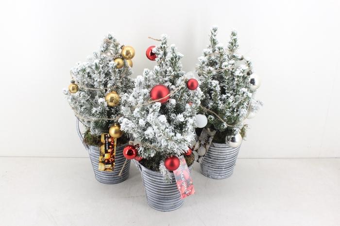 <h4>arr.. Kerst MB - Kerstboom zink emmer</h4>