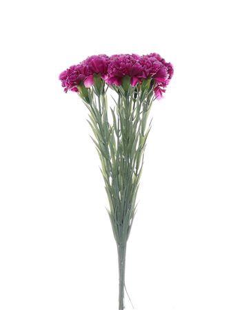 <h4>Carnation fuchsia bundle x12 3</h4>