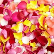 <h4>Rose Petals</h4>