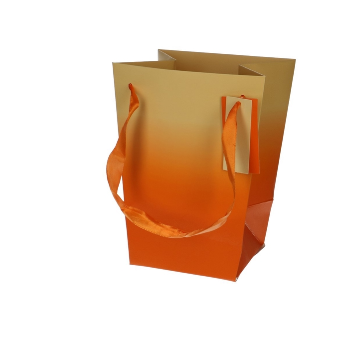<h4>Bags Basic 15/11*20cm</h4>