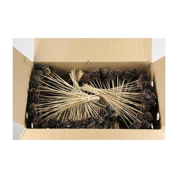 <h4>Stick Pine Cone Natural+glittr</h4>