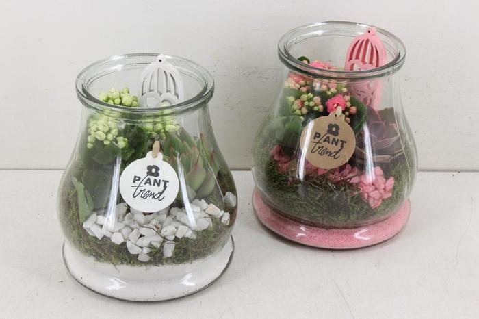 arr. PL - Druppel glas klein - roze/wit