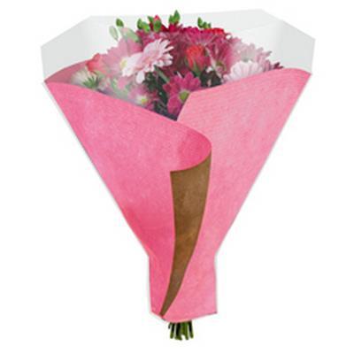 <h4>Housses 52x44x12cm OPP50 Kraftline rose</h4>