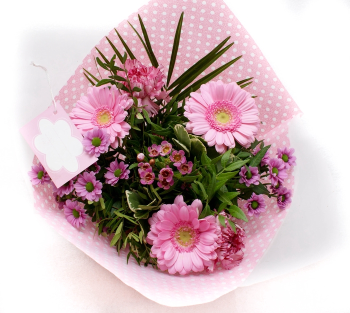 <h4>boeket kaartje 2204 roze</h4>