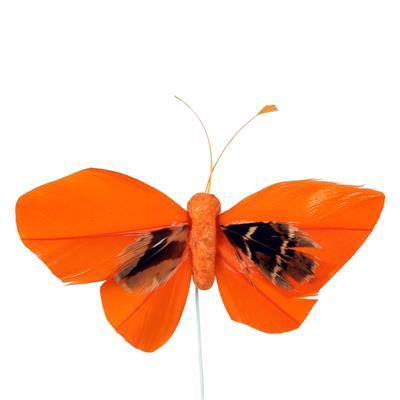 <h4>Bijsteker Butterfly 6x10cm+12cm draad 48 stuks or.</h4>