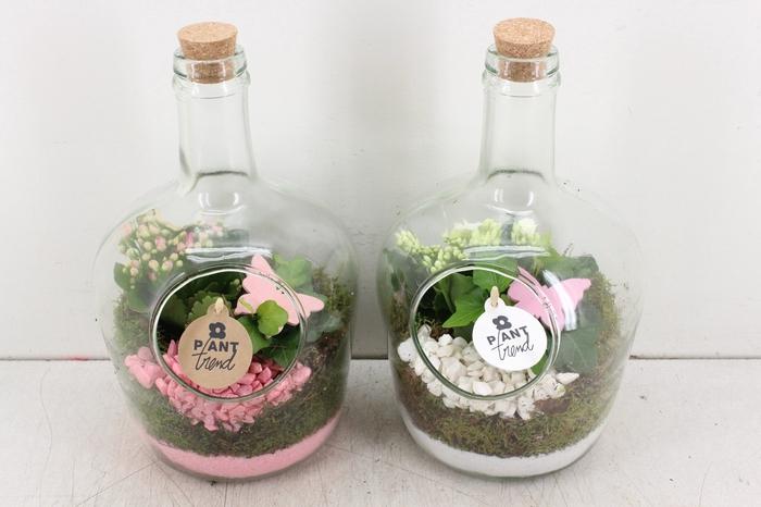 <h4>arr. PL - Fles met kurk - roze/wit</h4>