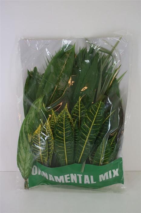 <h4>Tropical Leaf Mix 100stems</h4>