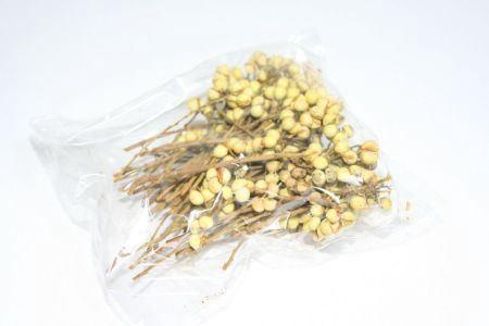 <h4>Hobby Mini Seeds On Branch 50gr</h4>