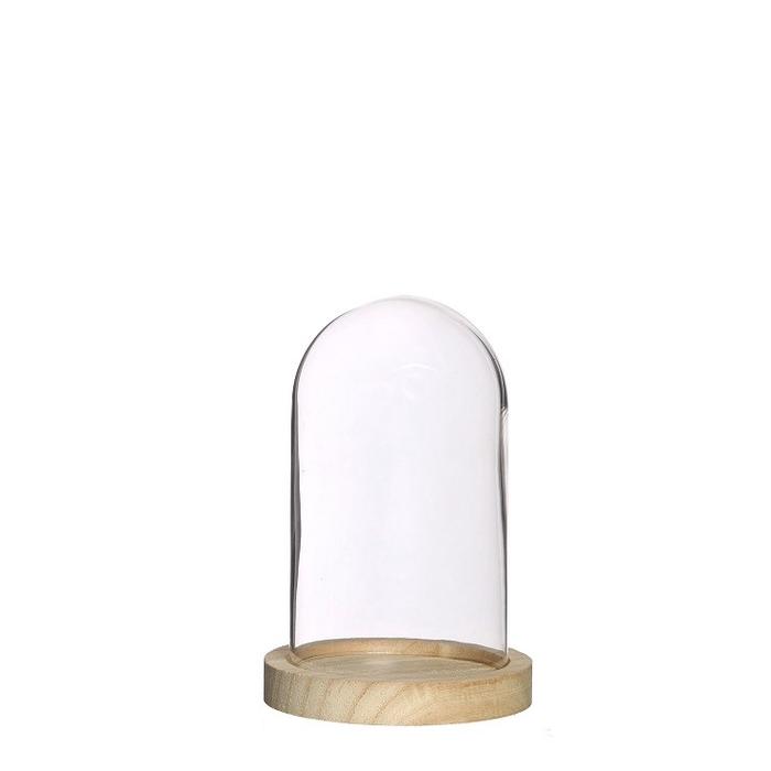 <h4>Glass Cloche+wood d10*15cm</h4>