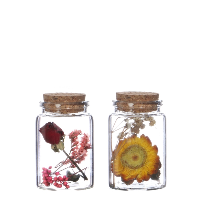 <h4>Dried flowers Glass+dried flower d04.5*07.5cm</h4>