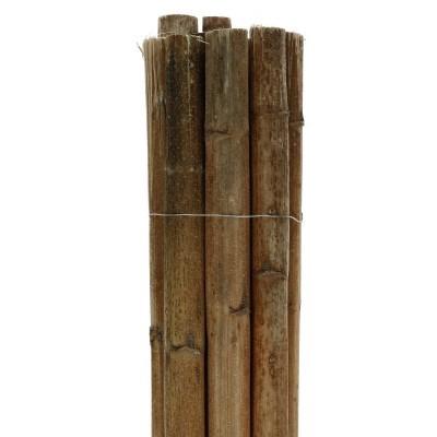 <h4>Droogdeco Zonnebloemstelen 55cm x10</h4>