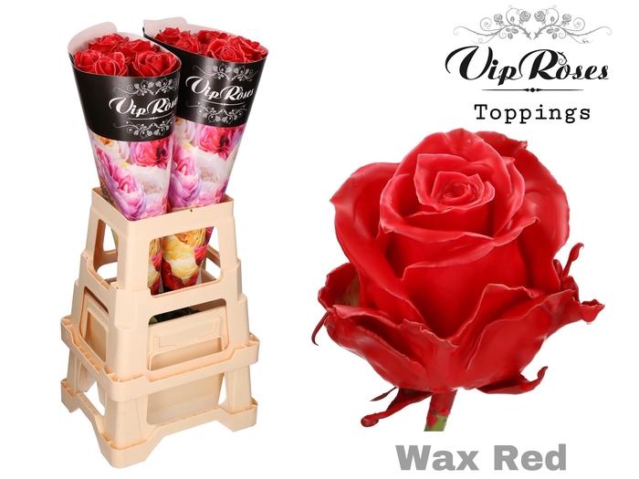 <h4>R GR WAX RED x 10</h4>