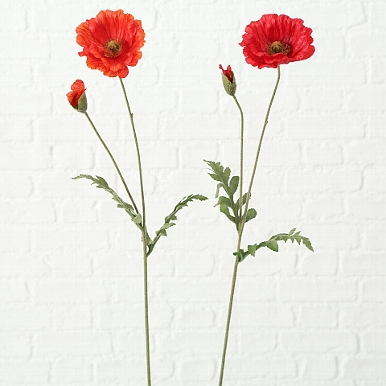 <h4>Zijde, Klaproos, H 64 cm, 1 ass, Red</h4>