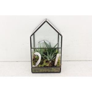 arr. SN A3 - Glas huis M 250/6
