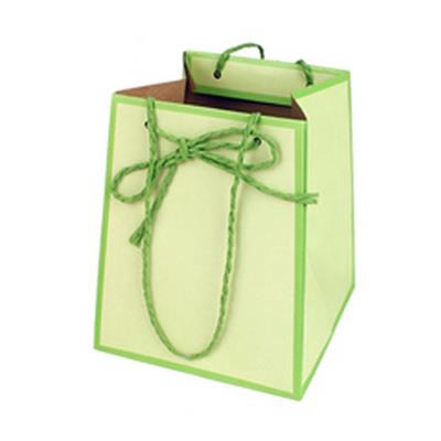 <h4>Bag Easy carton 12/12x15/15xH18cm green</h4>
