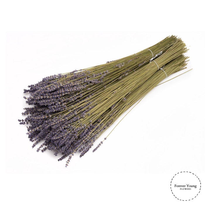 <h4>Dried Lavender Natural</h4>