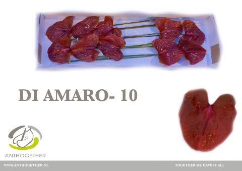 <h4>Anth Amaretto</h4>