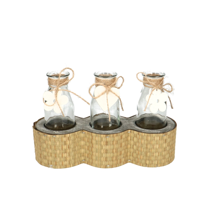 <h4>Glass Container+3bottels 23*8*15cm</h4>