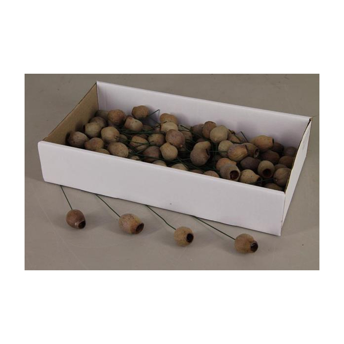<h4>Bellgum On 10cm Wire Box(100p)</h4>