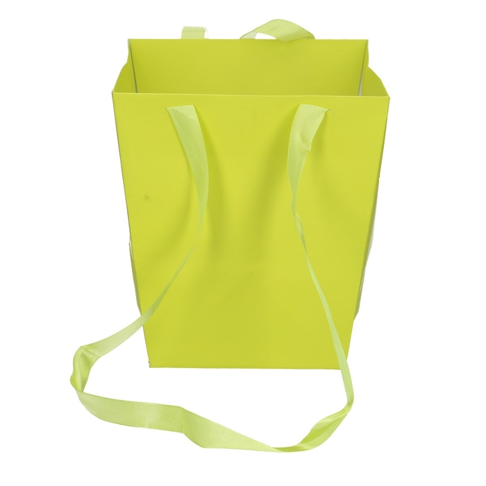 <h4>Bags Elegant 12.5/16.5*18cm</h4>
