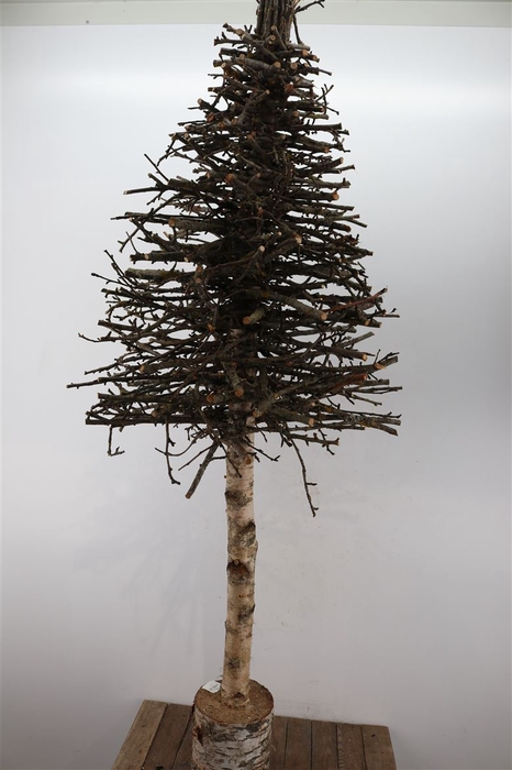 <h4>Tree Wooden Sticks 60 X 180cm</h4>