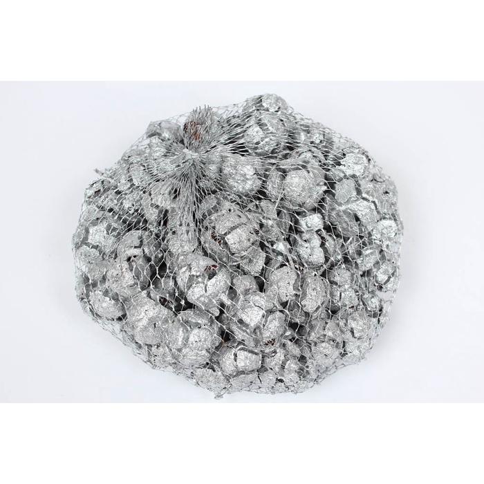 <h4>Cupressus 500gr in net Silver</h4>