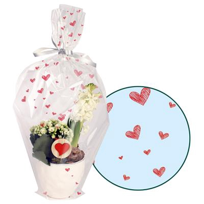 <h4>Housses 65x68x23cm OPP40 fermé Sketched Hearts</h4>