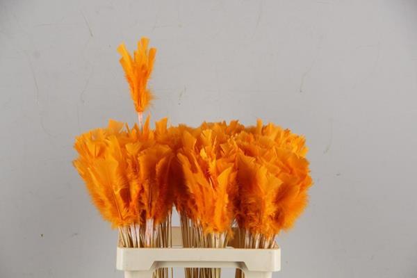 <h4>Stick Feather Orange 14cm</h4>
