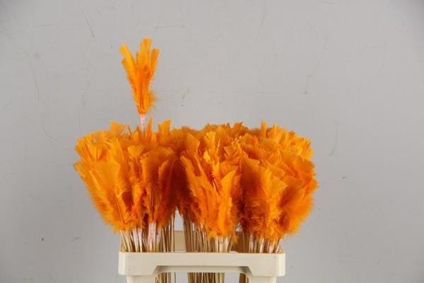 <h4>Stick Feather Orange 14cm</h4>
