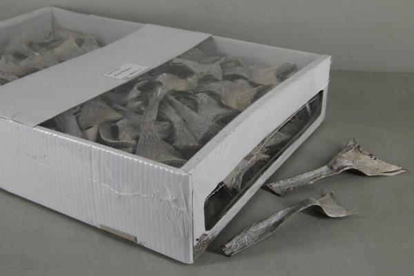 <h4>Dd Agave Mini Whitewash Box</h4>