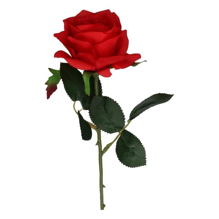 <h4>Silk Rose 45cm</h4>