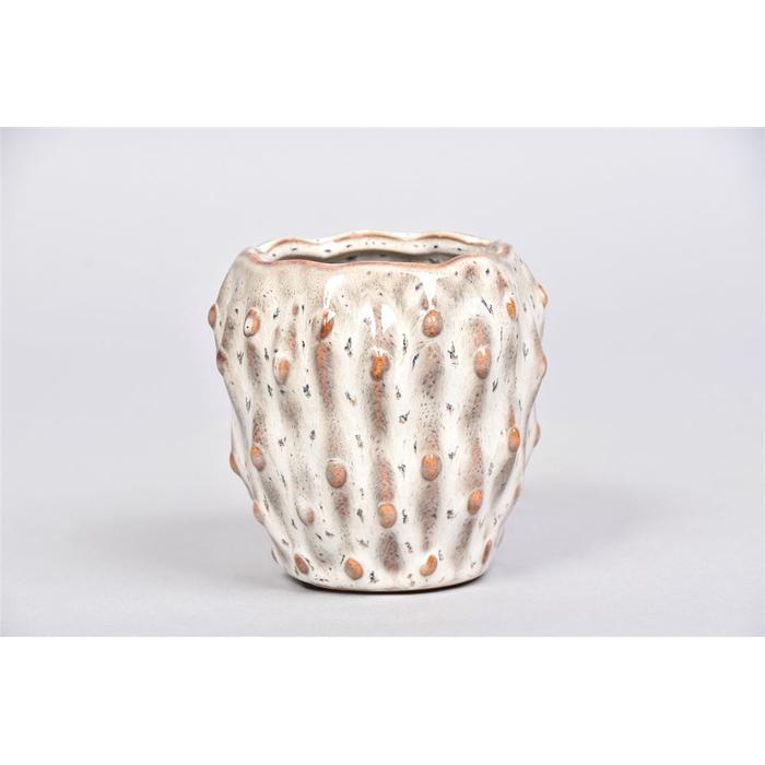<h4>Amarillo Wit Pot 10x10cm</h4>