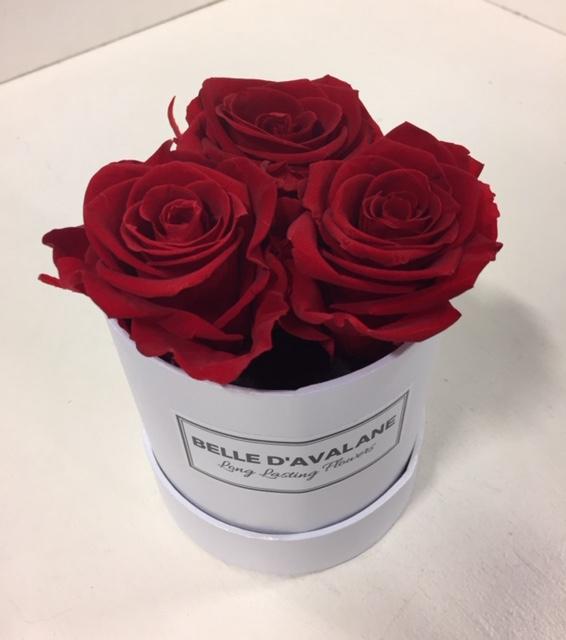 <h4>Flowerbox rd 10cm stabi. rood</h4>