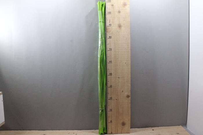 <h4>WOODEN RIBBON 1.1 MTR APPLE GREEN 100PCS 23076</h4>