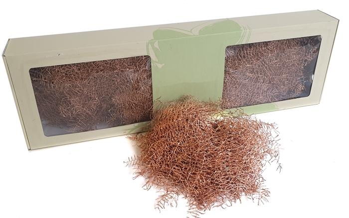 <h4>Coralfern preserved 10st per bunch Copper with glitter</h4>
