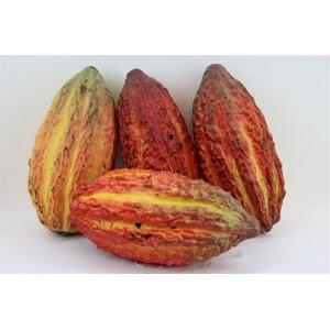 Cacao Pods Ass (mg)
