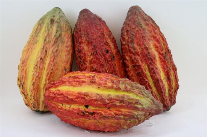 <h4>Cacao Pods Ass (mg)</h4>