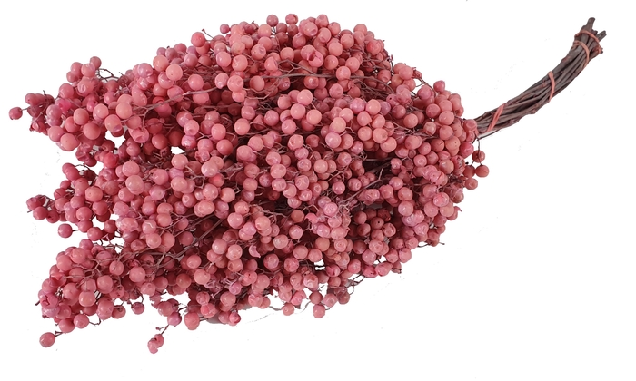 <h4>Pepperberries per bunch in poly frosted pink</h4>