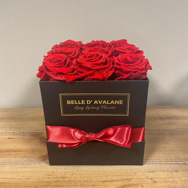 <h4>Box vk 15cm zwart-rood</h4>