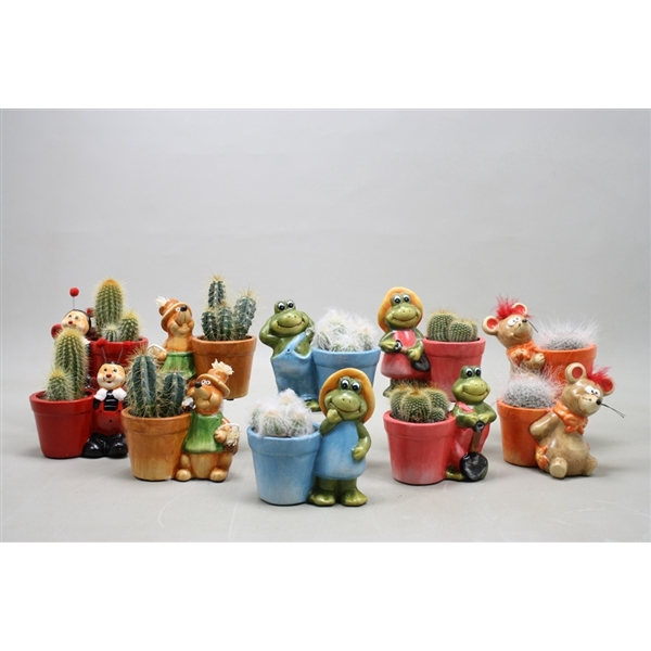 <h4>Cactus mix 5,5 cm. in planter dierfiguren</h4>